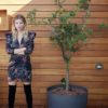 Celia Dragouni Floral Shiny Party Dress